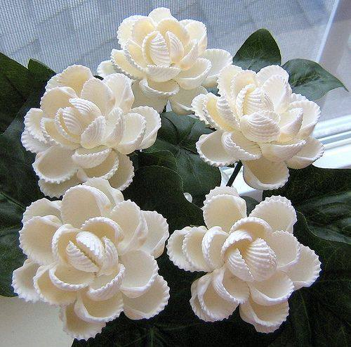 How to make shell flower simple craft ideas - Shell decorations how to make ...