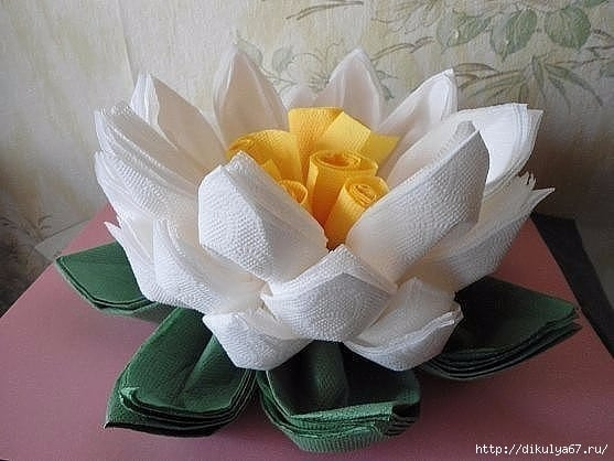 lotus flower of napkins