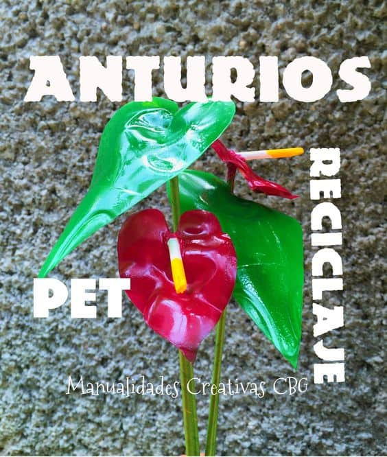 How To Make Anthurium Flower From Pet Bottle Simple