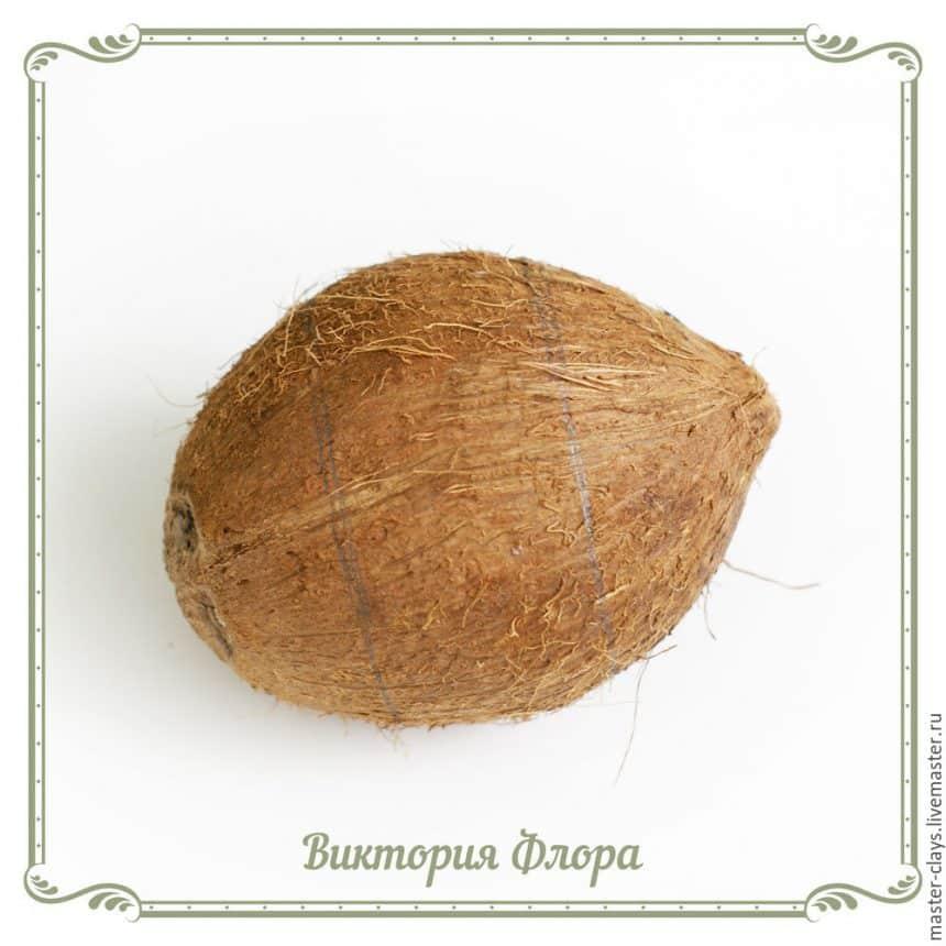 καρύδας βραχιόλι κέλυφος